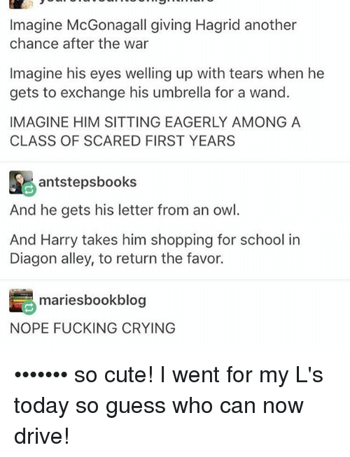 Crying, Cute, and Fucking: Imagine McGonagall giving Hagrid another  chance after the war  Imagine his eyes welling up with tears when he  gets to exchange his umbrella for a wand.  IMAGINE HIM SITTING EAGERLY AMONG A  CLASS OF SCARED FIRST YEARS  antstepsbooks  And he gets his letter from an owl.  And Harry takes him shopping for school in  Diagon alley, to return the favor.  mariesbookblog  NOPE FUCKING CRYING ••••••• so cute! I went for my L's today so guess who can now drive!