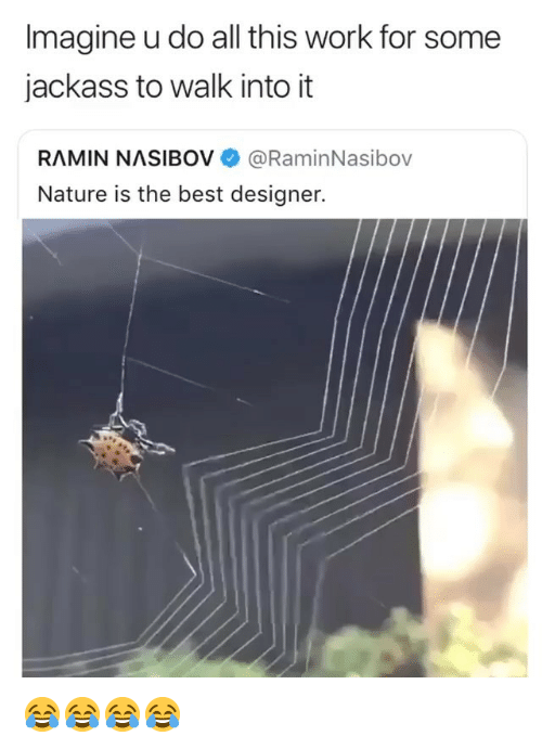 Work, Best, and Nature: Imagine u do all this work for some  jackass to walk into it  RAMIN NASIBOV @RaminNasibov  Nature is the best designer. 😂😂😂😂