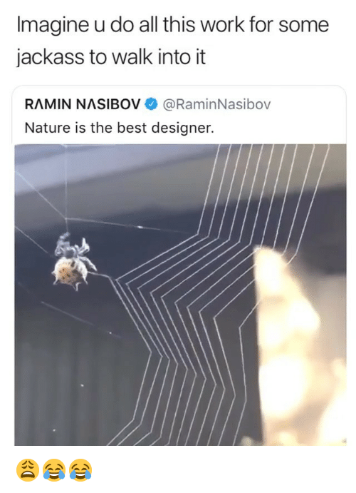Work, Best, and Nature: Imagine u do all this work for some  jackass to walk into it  RAMIN NASIBOV @RaminNasibov  Nature is the best designer. 😩😂😂