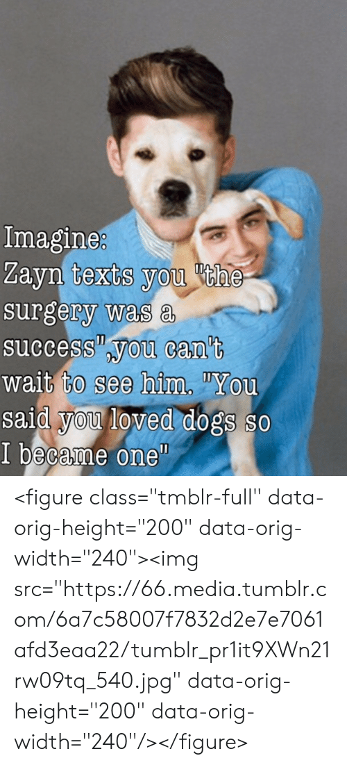 "Dogs, Tumblr, and Success: Imagine  Zayn texts you he  surgery was a  success you can't  wait to see him""You  said you loved dogs so  I became one""  0 <figure class=""tmblr-full"" data-orig-height=""200"" data-orig-width=""240""><img src=""https://66.media.tumblr.com/6a7c58007f7832d2e7e7061afd3eaa22/tumblr_pr1it9XWn21rw09tq_540.jpg"" data-orig-height=""200"" data-orig-width=""240""/></figure>"