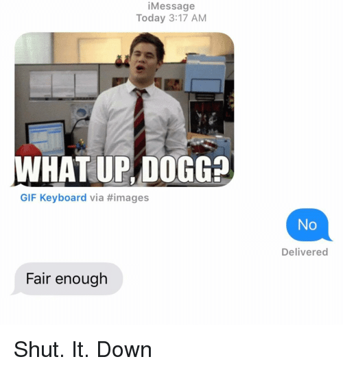 Gif, Relationships, and Texting: iMessage  Today 3:17 AM  WHAT UP, DOGG?  GIF Keyboard via #images  No  Delivered  Fair enough Shut. It. Down