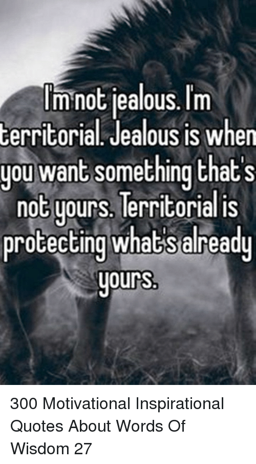 Imnot Jealous Im Cerritorial Jealous Is When You Want Something