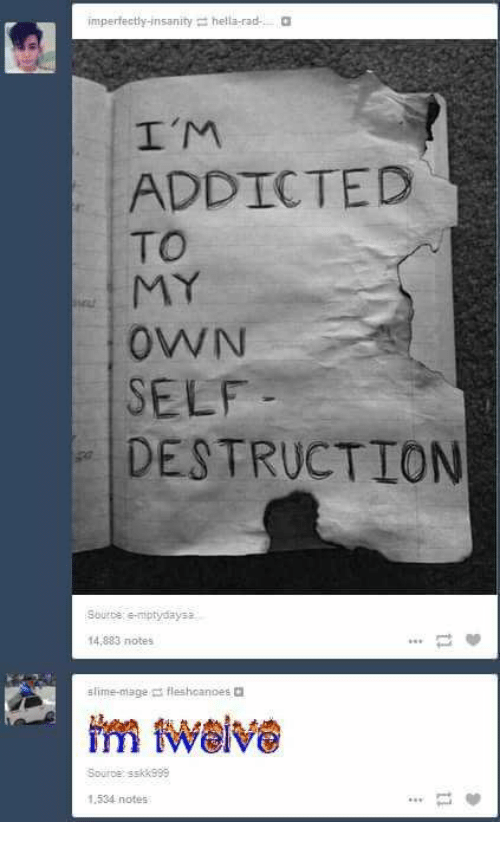 Addicted, Rad, and Insanity: imperfectly-insanity = hella-rad-  a  I'M  ADDICTED  TO  rut  OWN  SELF  DESTRUCTION  Sourte eniptydaysa  14,883 notes  slime-mage fleshoanoes  Sourde: sskk999  1.534 notes