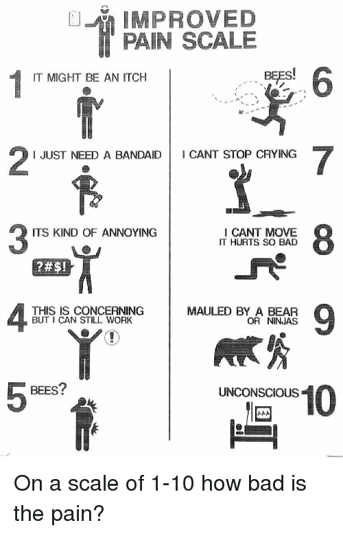 improved pain scale it might be an itch i just 3079728 ✅ 25 best memes about pain scale pain scale memes,Meme Pain Scale