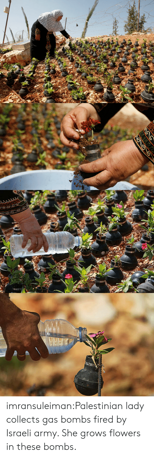 Target, Tumblr, and Army: imransuleiman:Palestinian lady collects gas bombs fired by Israeli army. She grows flowers in these bombs.