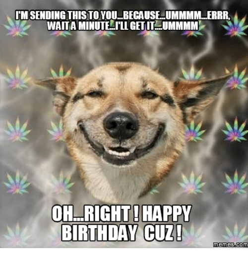 imsending this to you because ummmmlerrr waitaminutelilligetitlummmmp oh right happy birthday 13590481 ✅ 25 best memes about happy birthday smiling dog happy,Smiling Dog Meme