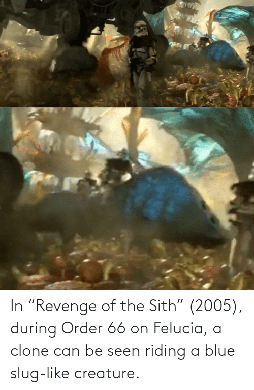 In Revenge Of The Sith 2005 During Order 66 On Felucia A Clone Can Be Seen Riding A Blue Slug Like Creature Sith Meme On Me Me