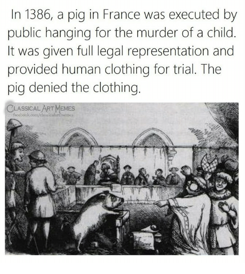 Facebook, Memes, and facebook.com: In 1386, a pig in France was executed by  public hanging for the murder of a child.  It was given full legal representation and  provided human clothing for trial. The  pig denied the clothing.  CLASSICALART MEMES  facebook.com/classicalartmemes