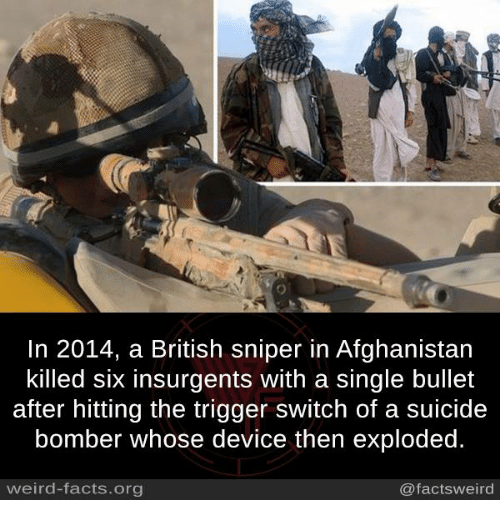 Facts, Memes, and Weird: In 2014, a British sniper in Afghanistan  killed six insurgents with a single bullet  after hitting the trigger switch of a suicide  bomber whose device then exploded.  weird-facts.org  @factsweird