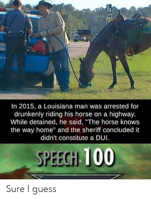"""Guess, Home, and Horse: In 2015, a Louisiana man was arrested for  drunkenly riding his horse on a highway.  While detained, he said, """"The horse knows  the way home"""" and the sheriff concluded it  didn't constitute a DUI  SPEEGH 100 Sure I guess"""