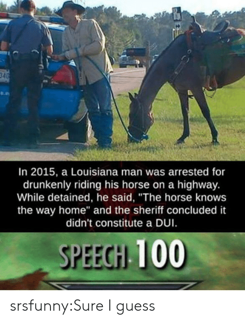 """Tumblr, Blog, and Guess: In 2015, a Louisiana man was arrested for  drunkenly riding his horse on a highway.  While detained, he said, """"The horse knows  the way home"""" and the sheriff concluded it  didn't constitute a DUI  SPEEGH 100 srsfunny:Sure I guess"""