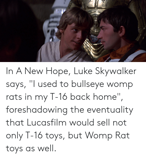 In A New Hope Luke Skywalker Says I Used To Bullseye Womp Rats In My T 16 Back Home Foreshadowing The Eventuality That Lucasfilm Would Sell Not Only T 16 Toys But Womp Rat Womp rat фото исполнителя womp rat. in a new hope luke skywalker says i