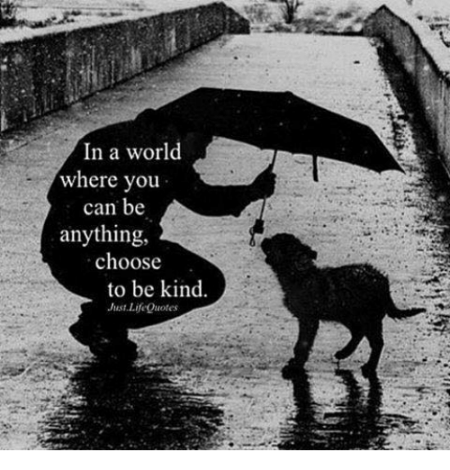 In A World Where You Can Be Anything Choose To Be Kind Just Life