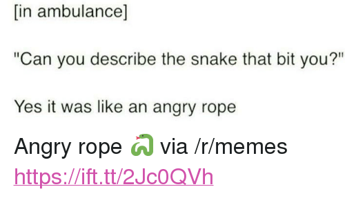 """Memes, Snake, and Angry: [in ambulance]  """"Can you describe the snake that bit you?""""  Yes it was like an angry rope <p>Angry rope 🐍 via /r/memes <a href=""""https://ift.tt/2Jc0QVh"""">https://ift.tt/2Jc0QVh</a></p>"""