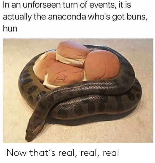 Anaconda, Got, and Real: In an unforseen turn of events, it is  actually the anaconda who's got buns,  hun Now that's real, real, real