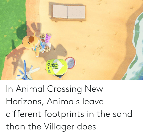 In Animal Crossing New Horizons Animals Leave Different Footprints