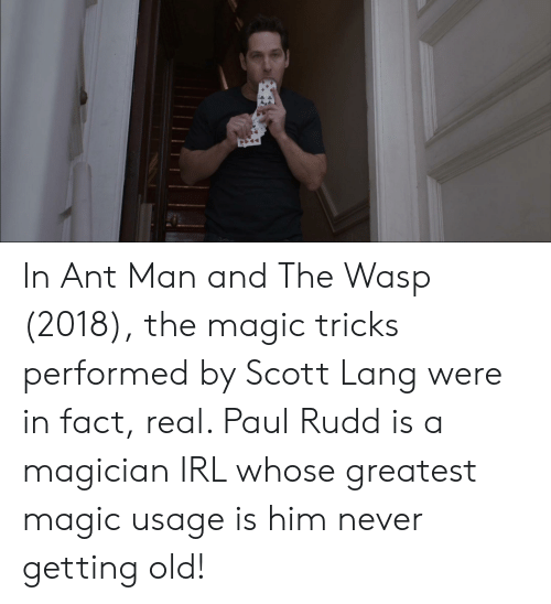 Magic, Old, and Never: In Ant Man and The Wasp (2018), the magic tricks performed by Scott Lang were in fact, real. Paul Rudd is a magician IRL whose greatest magic usage is him never getting old!
