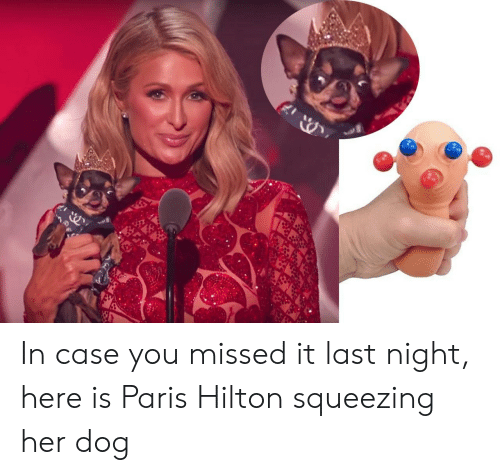 Hilton, Paris, and Her: In case you missed it last night, here is Paris Hilton squeezing her dog