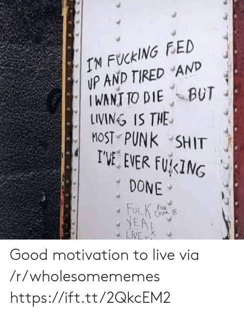 Good, Live, and Punk: IN FUCKING FED  UP AND TIRED AND  IWANT TO DIE BUT  LINING IS THE  MOST PUNK SHIT  I'VE EVER FUKING  DONE  FucK  YEA  LiVE  FroR  CAVA (8  K Good motivation to live via /r/wholesomememes https://ift.tt/2QkcEM2