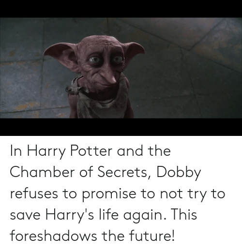 Future, Harry Potter, and Life: In Harry Potter and the Chamber of Secrets, Dobby refuses to promise to not try to save Harry's life again. This foreshadows the future!