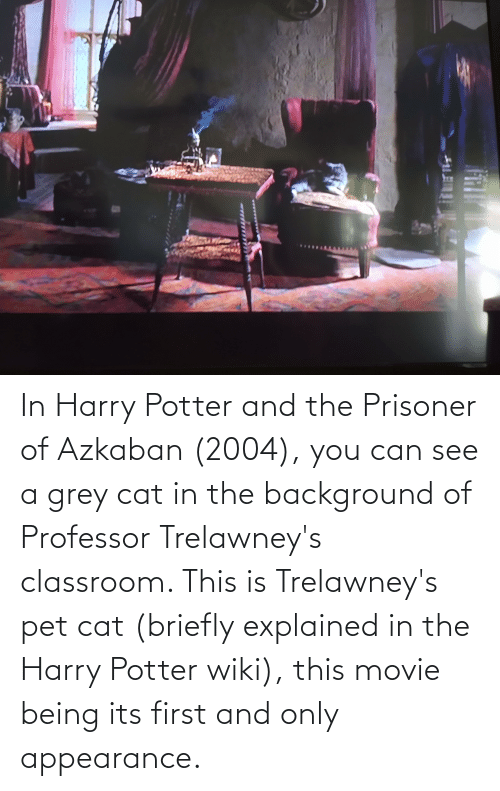 Harry Potter, Classroom, and Grey: In Harry Potter and the Prisoner of Azkaban (2004), you can see a grey cat in the background of Professor Trelawney's classroom. This is Trelawney's pet cat (briefly explained in the Harry Potter wiki), this movie being its first and only appearance.