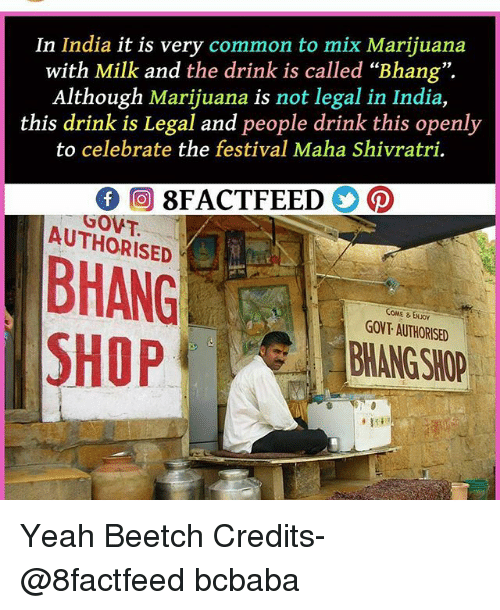 "Memes, Yeah, and Common: In India it is very common to mix Marijuana  with Milk and the drink is called ""Bhang"".  Although Marijuana is not legal in India,  this drink is Legal and people drink this openly  to celebrate the festival Maha Shivratri.  GOVT.  AUTHORISED  COME &ENJO  GOVT AUTHORISED  BHANG SHOP  SHOP Yeah Beetch Credits- @8factfeed bcbaba"
