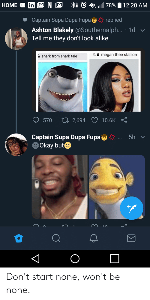 Blackpeopletwitter, Funny, and Fupa: in M N M  I 4 78%  НOME  12:20 AM  LTEI  Captain Supa Dupa Fupa replied  Ashton Blakely @Southernalph... 1d  Tell me they don't look alike.  aamegan thee stallion  shark from shark tale  570  2,694  10.6K  Captain Supa Dupa Fupa  Okay but  5h  O Don't start none, won't be none.