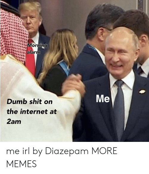 Dank, Dumb, and Internet: in  Me  Dumb shit on  the internet at  2am me irl by Diazepam MORE MEMES