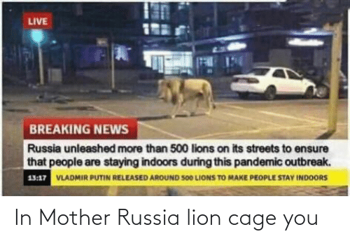 In Mother Russia Lion Cage You Reddit Meme On Me Me