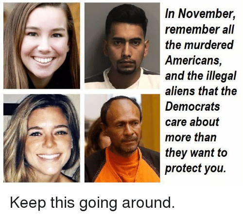 Memes, Aliens, and All The: In November,  remember all  the murdered  Americans,  and the illegal  aliens that the  Democrats  care about  more than  they want to  protect you. Keep this going around.