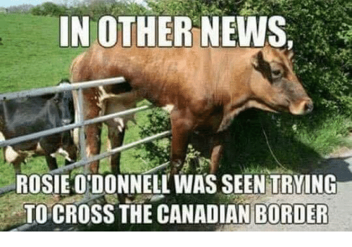 News, Rosie, and Cross: IN OTHER NEWS,  ROSIE ONDONNELL WAS SEEN TRYING  TO CROSS THE CANADIAN BORDER
