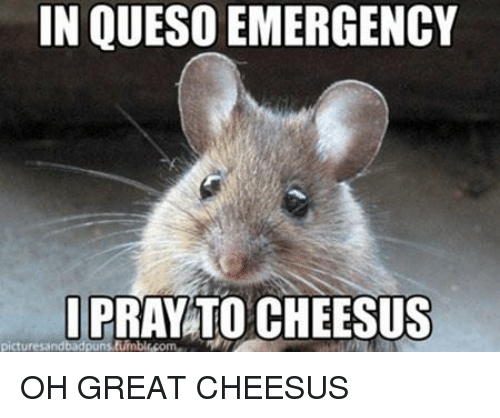 [Image: in-queso-emergency-picturesand-oh-great-...085549.png]