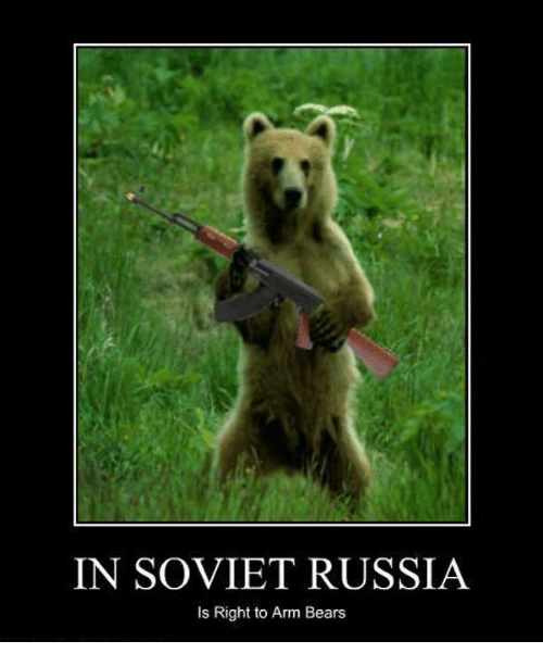 Image result for in soviet russia bear has right to all arms