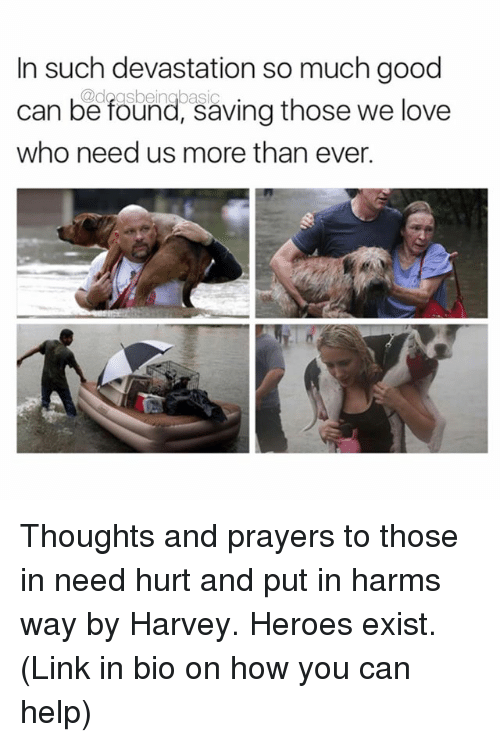 Love, Memes, and Good: In such devastation so much good  can be found, saving those we love  who need us more than ever. Thoughts and prayers to those in need hurt and put in harms way by Harvey. Heroes exist. (Link in bio on how you can help)