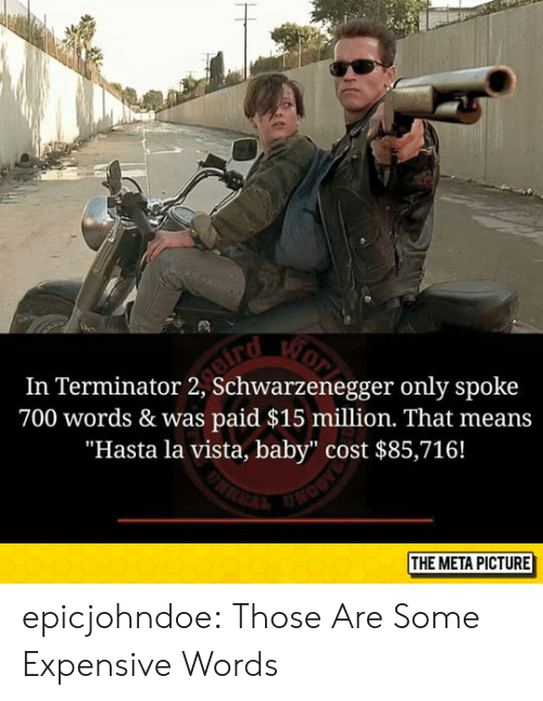 "Tumblr, Blog, and Terminator: In Terminator 2, Schwarzenegger only spoke  700 words & was paid $15 million. That means  ""Hasta la vista, baby"" cost $85,716!  THE META PICTURE epicjohndoe:  Those Are Some Expensive Words"