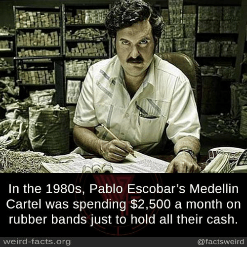 Facts, Memes, and Weird: In the 1980s, Pablo Escobar's Medellin  Cartel was spending $2,500 a month on  rubber bands just to hold all their cash  weird-facts.org  @factsweird