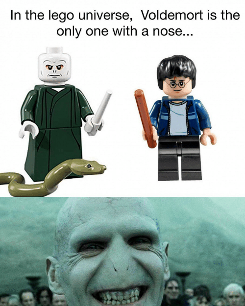 Lego, Only One, and Lego Universe: In the lego universe, Voldemort is the  only one with a nose...