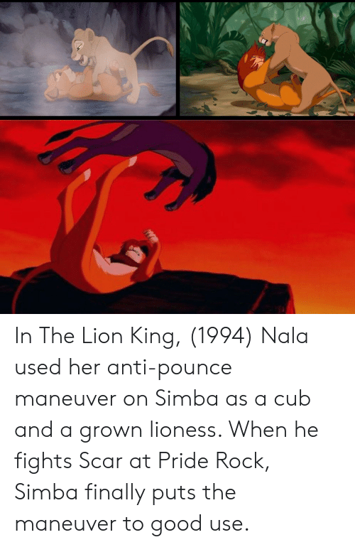 The Lion King, Good, and Lion: In The Lion King, (1994) Nala used her anti-pounce maneuver on Simba as a cub and a grown lioness. When he fights Scar at Pride Rock, Simba finally puts the maneuver to good use.