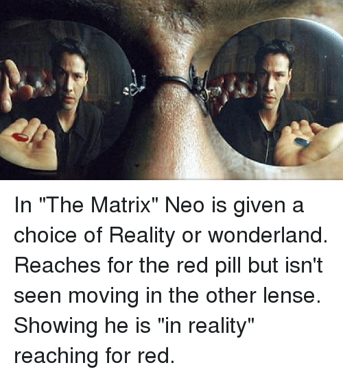 The Matrix, Matrix, and Reality