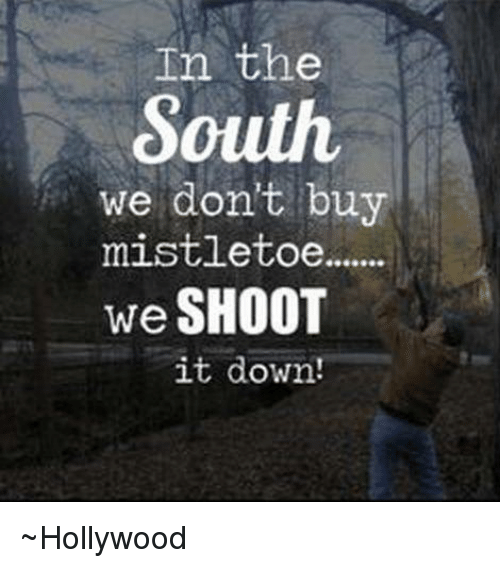 In The South We Dont Buy Mistletoe We Shoot It Down Hollywood