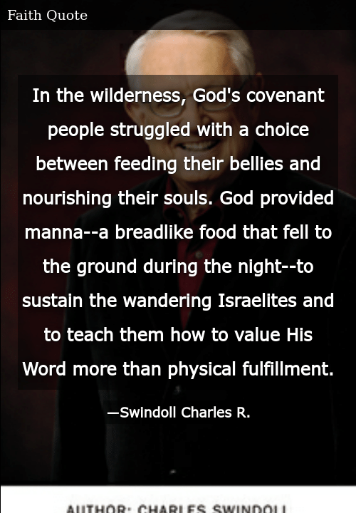 In the Wilderness God's Covenant People Struggled With a