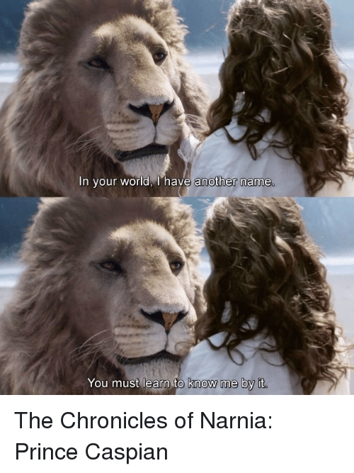 in your world have another name you must learn to 11185214 ✅ 25 best memes about chronicles of narnia chronicles of,Narnia Memes