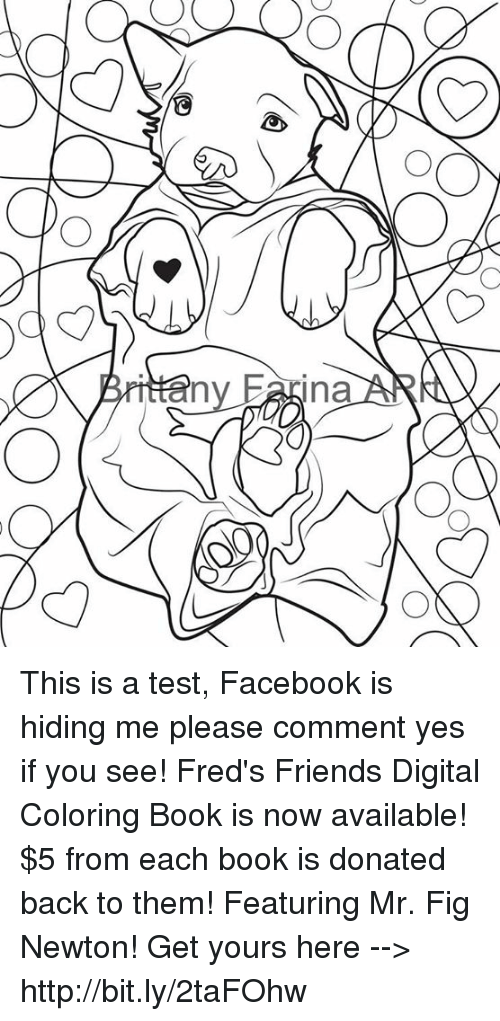 facebook friends and memes ina this is a test facebook is hiding - Digital Coloring Book