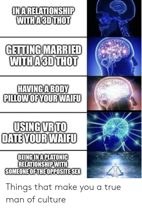 Anime, Sex, and Thot: INARELATIONSHIP  WITH A3D THOT  GETTING MARRIED  WITH A 3D THOT  HAVING A BODY  PILLOWOFYOUR WAIFU  USING VR TO  DATE YOUR WAIFU  BEING INAPLATONIC  RELATIONSHIPWITH  SOMEONE OF THEOPPOSITE SEX Things that make you a true man of culture