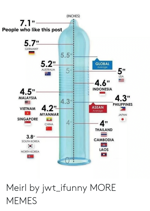 "Dank, Memes, and North Korea: (INCHES)  People who like this post  5.7""  GERMANY  5.5""  5.2""  GLOBAL  Average  5""  AUSTRALIA  USA  4.6""  INDONESIA  4.5""  4.3""  MALAYSIA  4.3""  PHILIPPINES  ASEAN  Average  VIETNAM  MYANMAR  JAPAN  SINGAPORE  4  4""  CHINA  THAILAND  CAMBODIA  LAOS  3.8""  SOUTH KOREA  NORTH KOREA Meirl by jwt_ifunny MORE MEMES"