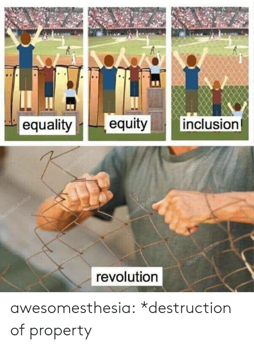 Tumblr, Blog, and Revolution: || inclusion  equalityequity  revolution awesomesthesia:  *destruction of property