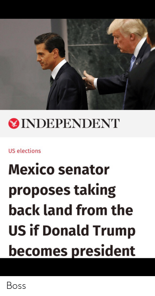 Donald Trump, Mexico, and Trump: INDEPENDENT  US elections  Mexico senator  proposes taking  back land from the  US if Donald Trump  becomes president Boss