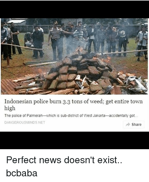Memes, News, and Police: Indonesian police burn 3.3 tons of weed; get entire town  high  The police of Palmerah-which is sub-district of West Jakarta-accidentally got..  DANGEROUSMINDS NET  → Share Perfect news doesn't exist.. bcbaba