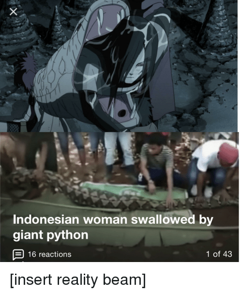Indonesian Woman Swallowed by Giant Python 16 Reactions 1 of