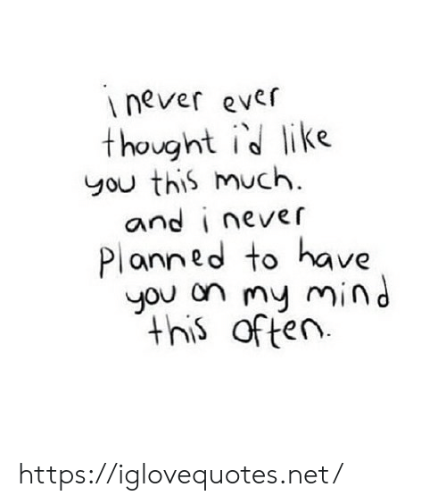 Mind, Never, and Thought: inever ever  thought id like  you this much  and i never  Planned to have  you on my mind  this often https://iglovequotes.net/